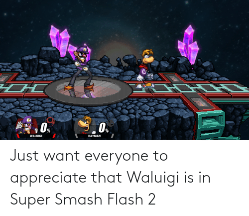 super smash: Just want everyone to appreciate that Waluigi is in Super Smash Flash 2