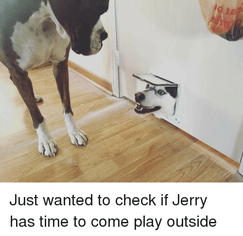 Jerri: Just wanted to check if Jerry has time to come play outside
