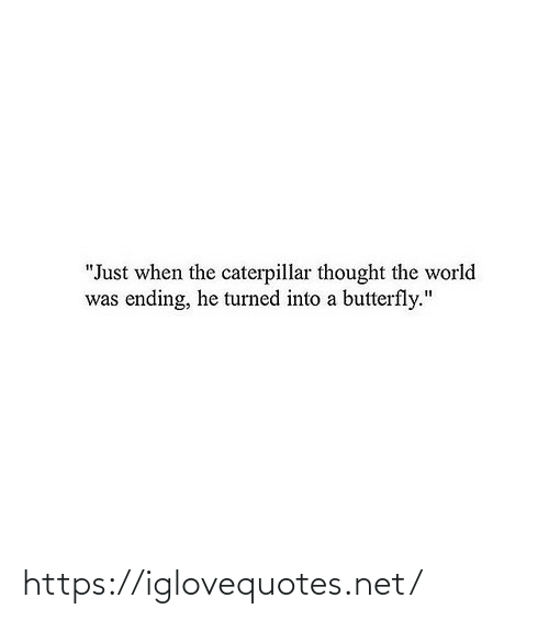"Butterfly, World, and Thought: ""Just when the caterpillar thought the world  was ending, he turned into a butterfly."" https://iglovequotes.net/"