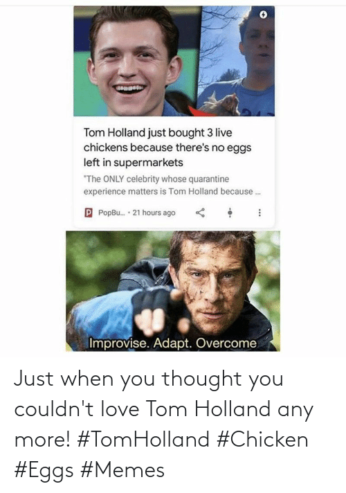 eggs: Just when you thought you couldn't love Tom Holland any more! #TomHolland #Chicken #Eggs #Memes