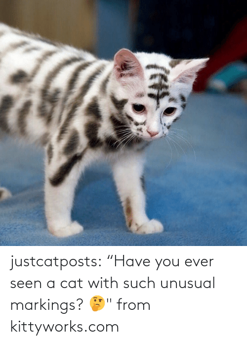 "seen: justcatposts:  ""Have you ever seen a cat with such unusual markings? 🤔"" from kittyworks.com"