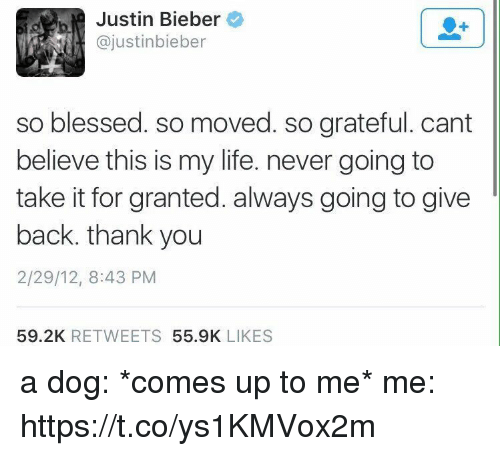 So Blessed So Moved: Justin Bieber  ajustinbieber  so blessed. so moved. so grateful. cant  believe this is my life. never going to  take it for granted. always going to give  back, thank you  2/29/12, 8:43 PM  59.2K  RETWEETS  55.9K  LIKES a dog: *comes up to me*   me: https://t.co/ys1KMVox2m