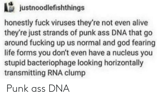 Punk Ass: justnoodlefishthings  honestly fuck viruses they're not even alive  they're just strands of punk ass DNA that go  around fucking up us normal and god fearing  life forms you don't even have a nucleus you  stupid bacteriophage looking horizontally  transmitting RNA clump Punk ass DNA