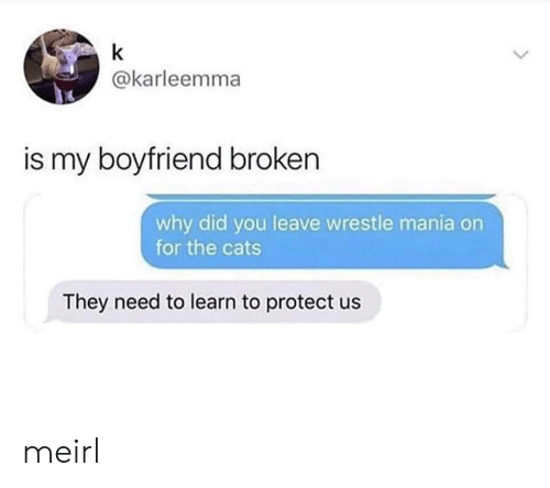 wrestle: k  @karleemma  is my boyfriend broken  why did you leave wrestle mania on  for the cats  They need to learn to protect us meirl