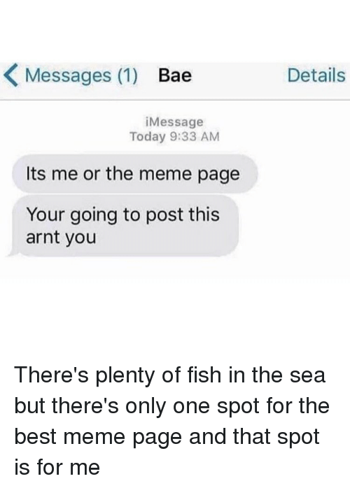 Bae, Meme, and Best: K Messages (1)  Bae  i Message  Today 9:33 AM  Its me or the meme page  Your going to post this  arnt you  Details There's plenty of fish in the sea but there's only one spot for the best meme page and that spot is for me