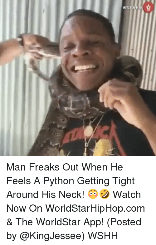 freaking out: K31LYB Man Freaks Out When He Feels A Python Getting Tight Around His Neck! 😳🤣 Watch Now On WorldStarHipHop.com & The WorldStar App! (Posted by @KingJessee) WSHH