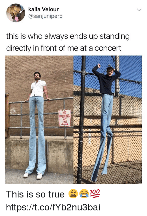 Memes, True, and Time: kaila Velour  @sanjuniperc  this is who always ends up standing  directly in front of me at a concert  NO  PARKING  TIME  ard eANY This is so true 😩😂💯 https://t.co/fYb2nu3bai