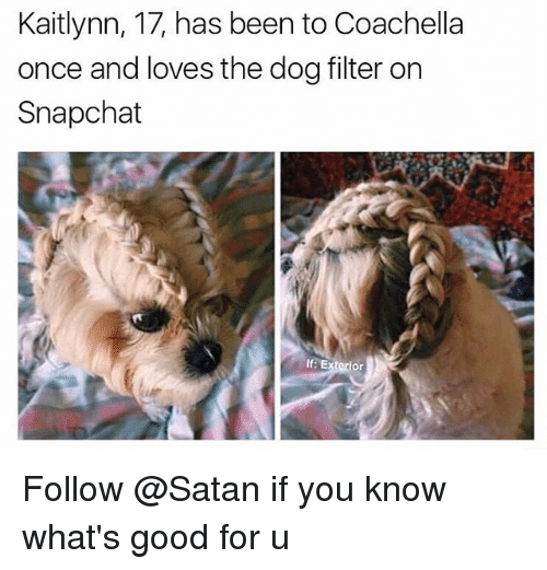 Coachella, Dank Memes, and Satan: Kaitlynn, 17, has been to Coachella  once and loves the dog filter on  Snapchat  If: Exterior Follow @Satan if you know what's good for u