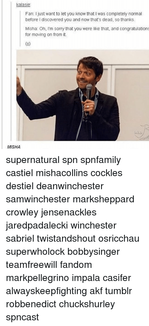 Memes, Sorry, and Tumblr: kalasie  Fan: I just want to let you know that I was completely normal  before I discovered you and now that's dead, so thanks.  Misha: Oh, I'm sorry that you were like that, and congratulations  for moving on from it  MISHA supernatural spn spnfamily castiel mishacollins cockles destiel deanwinchester samwinchester marksheppard crowley jensenackles jaredpadalecki winchester sabriel twistandshout osricchau superwholock bobbysinger teamfreewill fandom markpellegrino impala casifer alwayskeepfighting akf tumblr robbenedict chuckshurley spncast