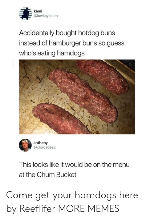 Dank, Memes, and Target: kami  @lowkeyscum  Accidentally bought hotdog buns  instead of hamburger buns so guess  who's eating hamdogs  anthony  @xforcades2  This looks like it would be on the menu  at the Chum Bucket Come get your hamdogs here by Reeflifer MORE MEMES