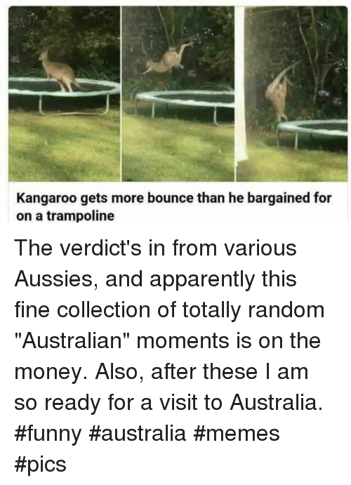 """memes pics: Kangaroo gets more bounce than he bargained for  on a trampoline The verdict's in from various Aussies, and apparently this fine collection of totally random """"Australian"""" moments is on the money. Also, after these I am so ready for a visit to Australia. #funny #australia #memes #pics"""