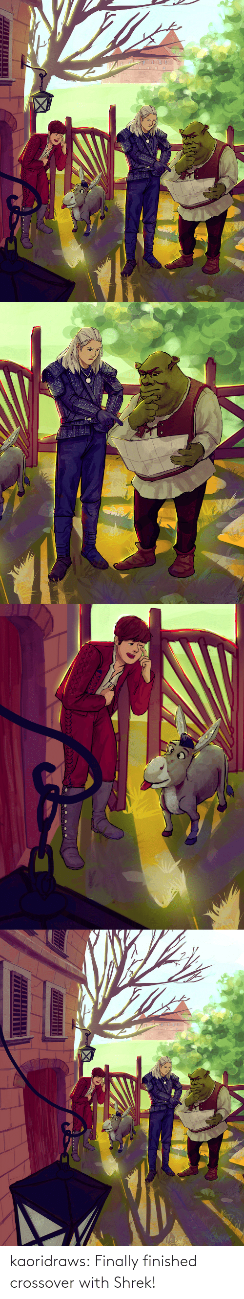 finished: kaoridraws:  Finally finished crossover with Shrek!