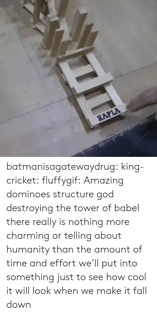Charming: KAPLA batmanisagatewaydrug: king-cricket:  fluffygif:  Amazing dominoes structure    god destroying the tower of babel  there really is nothing more charming or telling about humanity than the amount of time and effort we'll put into something just to see how cool it will look when we make it fall down