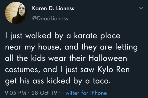 karate: Karen D. Lioness  @DeadLioness  I just walked by a karate place  near my house, and they are letting  all the kids wear their Halloween  costumes, and I just saw Kylo Ren  get his ass kicked by a ta co.  9:05 PM 28 Oct 19 Twitter for iPhone