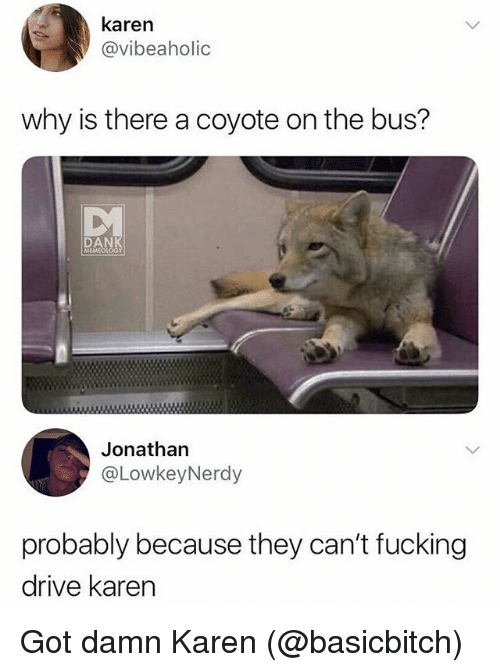 Dank, Fucking, and Funny: karen  @vibeaholic  why is there a coyote on the bus?  DANK  MEMEOLOGY  Jonathan  @LowkeyNerdy  probably because they can't fucking  drive karern Got damn Karen (@basicbitch)