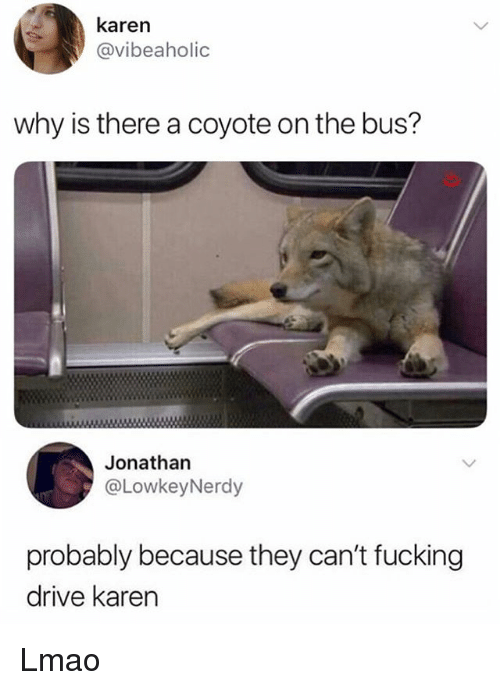 Fucking, Lmao, and Memes: karen  @vibeaholic  why is there a coyote on the bus?  Jonathan  @LowkeyNerdy  probably because they can't fucking  drive karen Lmao