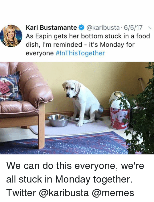 Food, Memes, and Twitter: Kari Bustamante @karibusta 6/5/17  As Espin gets her bottom stuck in a food  dish, l'm reminded - it's Monday for  everyone We can do this everyone, we're all stuck in Monday together. Twitter @karibusta @memes