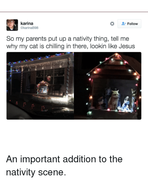 nativity scene: karina  Follow  @karinaB98  So my parents put up a nativity thing, tell me  why my cat is chilling in there, lookin like Jesus An important addition to the nativity scene.