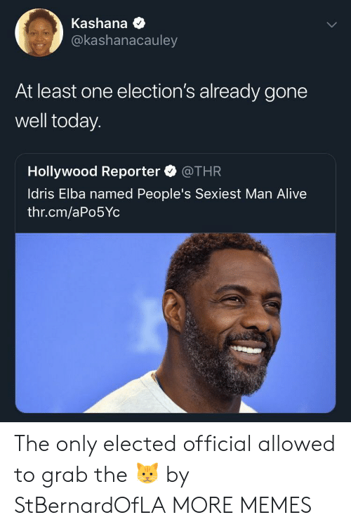 Elections: Kashana  @kashanacauley  At least one election's already gone  well today.  Hollywood Reporter @THR  ldris Elba named People's Sexiest Man Alive  thr.cm/aPo5Yc The only elected official allowed to grab the 🐱 by StBernardOfLA MORE MEMES