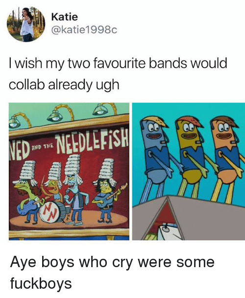 Memes, Boys, and 🤖: Katie  @katie1998c  I wish my two favourite bands would  collab already ugh  NEDLEFiSH  AND THE Aye boys who cry were some fuckboys