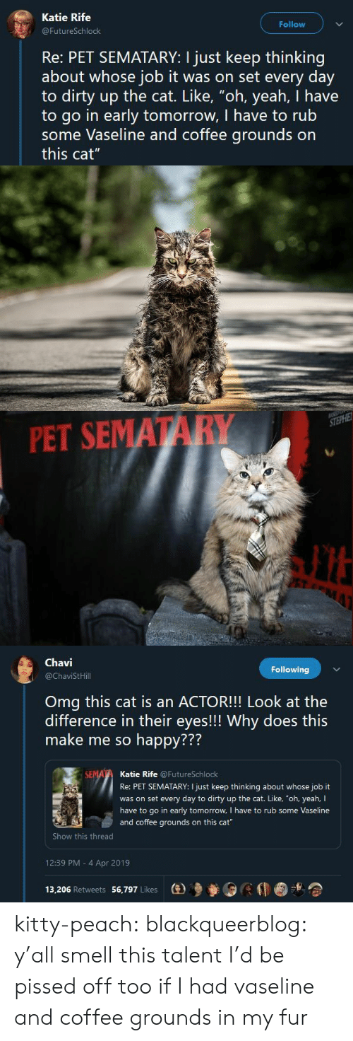 "me-so-happy: Katie Rife  Follow  FutureSchlock  Re: PET SEMATARY: I just keep thinking  about whose job it was on set every day  to dirty up the cat. Like, ""oh, yeah, I have  to go in early tomorrow, I have to rub  some Vaseline and coffee grounds on  this cat""   PET SEMATARY   Chavi  @ChaviStHill  Following  Omg this cat is an ACTOR!!! Look at the  difference in their eyes!!! Why does this  make me so happy???  772  Katie Rife @FutureSchlock  Re: PET SEMATARY: I just keep thinking about whose job it  was on set every day to dirty up the cat. Like, ""oh, yeah, I  have to go in early tomorrow, I have to rub some Vaseline  and coffee grounds on this cat  Show this thread  12:39 PM - 4 Apr 2019  13,206 Retweets 56,797 Likes  (e)乡參0 kitty-peach: blackqueerblog:  y'all smell this talent  I'd be pissed off too if I had vaseline and coffee grounds in my fur"