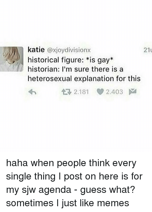 Memes, Guess, and Historical: katie @xjoydivisionx  historical figure: *is gay*  historian: I'm sure there is a  heterosexual explanation for this  21  t3 2.181  V 2.403 haha when people think every single thing I post on here is for my sjw agenda - guess what? sometimes I just like memes