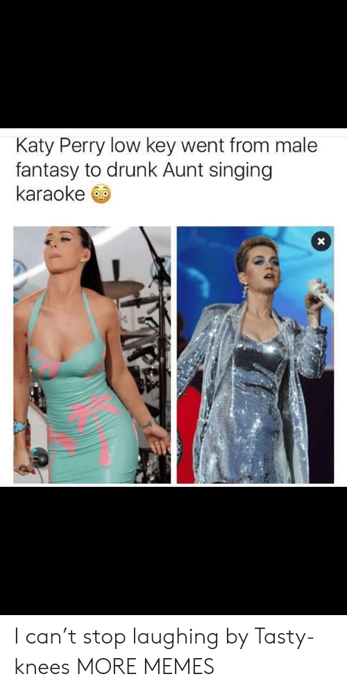 Katy Perry: Katy Perry low key went from male  fantasy to drunk Aunt singing  karaoke I can't stop laughing by Tasty-knees MORE MEMES