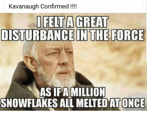 Disturbance In The Force: Kavanaugh Confirmed !!!  IFELT A GREAT  DISTURBANCE IN THE FORCE  AS IFAMILLION  SNOWFLAKES ALL MELTEDAT ONCE