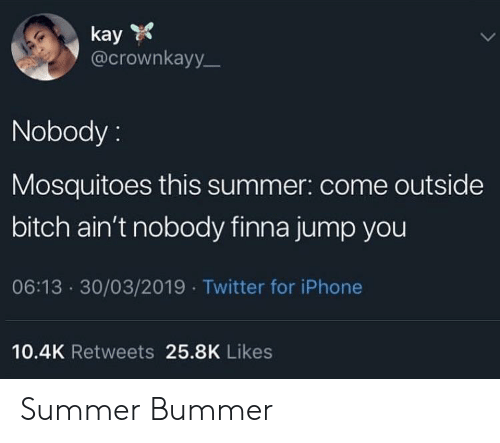 come outside: kay  @crownkayy  Nobody:  Mosquitoes this summer: come outside  bitch ain't nobody finna jump you  06:13 30/03/2019 Twitter for iPhone  10.4K Retweets 25.8K Likes Summer Bummer
