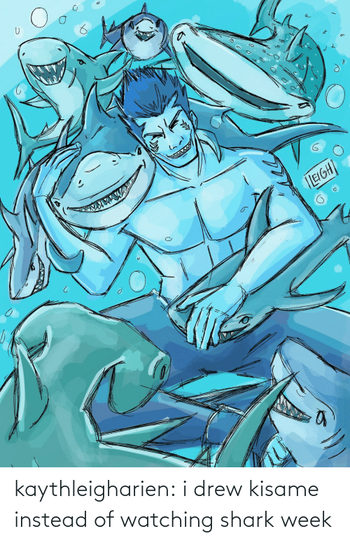 Tumblr, Shark, and Blog: kaythleigharien:  i drew kisame instead of watching shark week