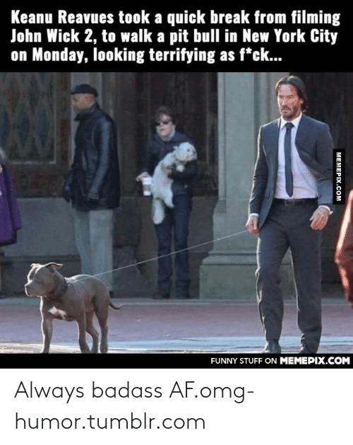 John Wick 2: Keanu Reavues took a quick break from filming  John Wick 2, to walk a pit bull in New York City  on Monday, looking terrifying as f*ck...  FUNNY STUFF ON MEMEPIX.COM  МЕМЕРIХ.Сом Always badass AF.omg-humor.tumblr.com