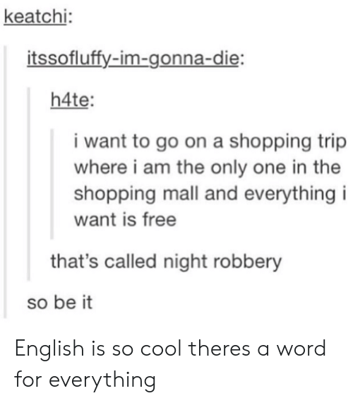 i am the only one: keatchi  itssofluffy-im-gonna-die  h4te  i want to go on a shopping trip  where i am the only one in the  shopping mall and everything i  want is free  that's called night robbery  so be it English is so cool theres a word for everything