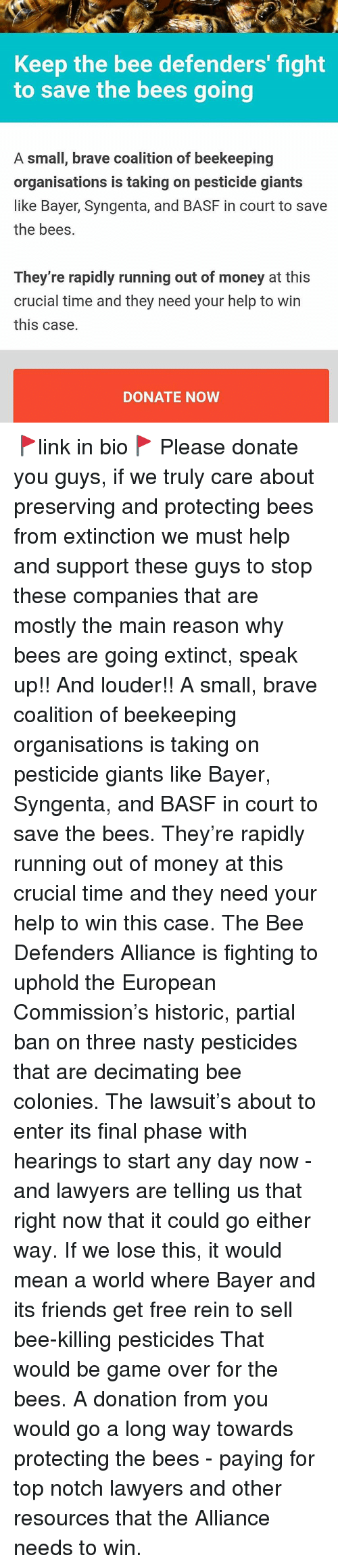 syngenta: Keep the bee defenders' fight  to save the bees going  A small, brave coalition of beekeeping  organisations is taking on pesticide giants  like Bayer, Syngenta, and BASF in court to save  the bees.  They're rapidly running out of money at this  crucial time and they need your help to win  this case.  DONATE NOW 🚩link in bio🚩 Please donate you guys, if we truly care about preserving and protecting bees from extinction we must help and support these guys to stop these companies that are mostly the main reason why bees are going extinct, speak up!! And louder!! A small, brave coalition of beekeeping organisations is taking on pesticide giants like Bayer, Syngenta, and BASF in court to save the bees. They're rapidly running out of money at this crucial time and they need your help to win this case. The Bee Defenders Alliance is fighting to uphold the European Commission's historic, partial ban on three nasty pesticides that are decimating bee colonies. The lawsuit's about to enter its final phase with hearings to start any day now - and lawyers are telling us that right now that it could go either way. If we lose this, it would mean a world where Bayer and its friends get free rein to sell bee-killing pesticides That would be game over for the bees. A donation from you would go a long way towards protecting the bees - paying for top notch lawyers and other resources that the Alliance needs to win.
