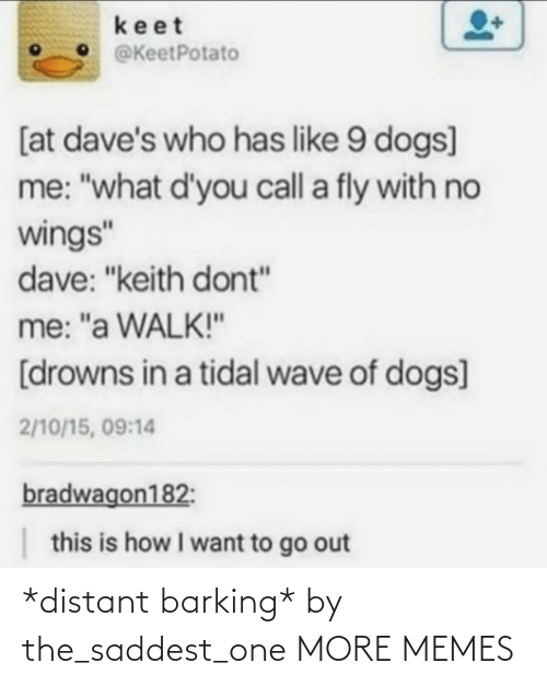 "keith: keet  @KeetPotato  [at dave's who has like 9 dogs]  me: ""what d'you call a fly with no  wings""  dave: ""keith dont""  me: ""a WALK!""  [drowns in a tidal wave of dogs]  2/10/15, 09:14  bradwagon182:  this is how I want to go out *distant barking* by the_saddest_one MORE MEMES"
