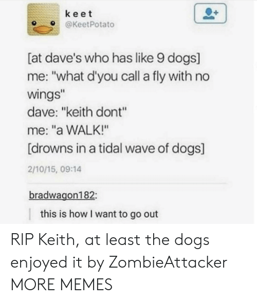 """Drowns: keet  OKeetPotato  [at dave's who has like 9 dogs]  me: """"what d'you call a fly with no  wings  dave: """"keith dont""""  me: """"a WALK!""""  [drowns in a tidal wave of dogs]  2/10/15, 09:14  bradwagon182  this is how I want to go out RIP Keith, at least the dogs enjoyed it by ZombieAttacker MORE MEMES"""