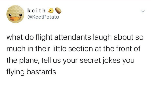 keith: keith  @KeetPotato  what do flight attendants laugh about  much in their little section at the front of  the plane, tell us your secret jokes you  flying bastards
