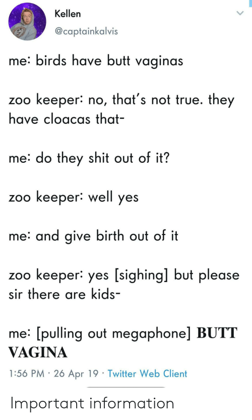 Sighing: Kellen  @captainkalvis  me: birds have butt vaginas  zoo keeper: no, that's not true. they  have cloacas that-  me: do they shit out of it?  zoo keeper: well yes  me: and give birth out of it  zoo keeper: yes [sighing] but please  sir there are kids-  me: [pulling out megaphone] BUTT  VAGINA  1:56 PM 2ó Apr 19 Twitter Web Client Important information
