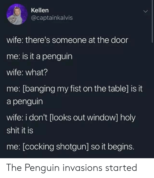 Banging: Kellen  @captainkalvis  wife: there's someone at the door  me: is it a penguin  wife: what?  me: [banging my fist on the table] is it  a penguin  wife: i don't [looks out window] holy  shit it is  me: [cocking shotgun] so it begins. The Penguin invasions started