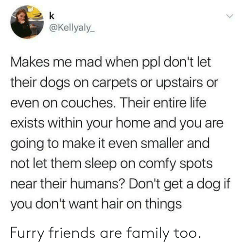 carpets: @Kellyaly  Makes me mad when ppl don't let  their dogs on carpets or upstairs or  even on couches. Their entire life  exists within your home and you are  going to make it even smaller and  not let them sleep on comfy spots  near their humans? Don't get a dog if  you don't want hair on things Furry friends are family too.