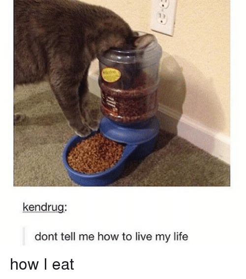 Dont Tell Me How To Live My Life: ken drug:  dont tell me how to live my life how I eat