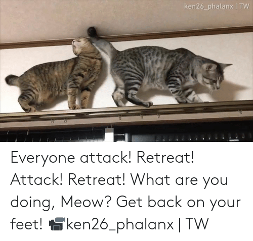 Retreat: ken26_phalanx | TW Everyone attack! Retreat! Attack! Retreat! What are you doing, Meow? Get back on your feet!  📹ken26_phalanx | TW