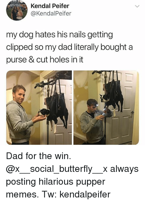 kendal: Kendal Peifer  @KendalPeifer  my dog hates his nails getting  clipped so my dad literally bought a  purse & cut holes in it Dad for the win. @x__social_butterfly__x always posting hilarious pupper memes. Tw: kendalpeifer