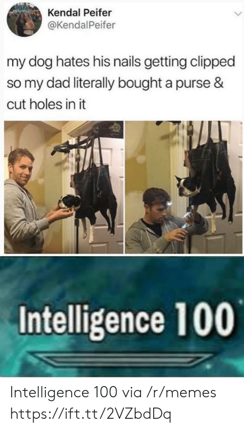 kendal: Kendal Peifer  @KendalPeifer  my dog hates his nails getting clipped  so my dad literally bought a purse &  cut holes in it  Intelligence 100 Intelligence 100 via /r/memes https://ift.tt/2VZbdDq