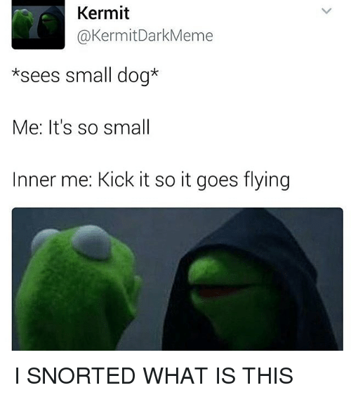 What Is, Trendy, and Kick: Kermit  Kermit DarkMeme  *sees small dog*  Me: It's so small  Inner me: Kick it so it goes flying I SNORTED WHAT IS THIS