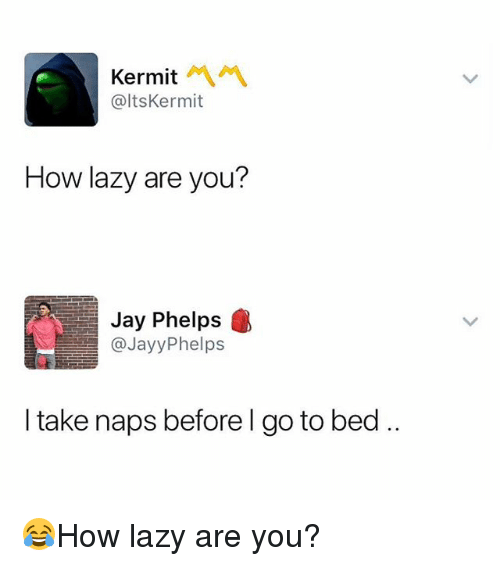 Jay, Lazy, and Memes: Kermit  @ltsKermit  How lazy are you?  Jay Phelps  @JayyPhelps  I take naps before l go to bed 😂How lazy are you?
