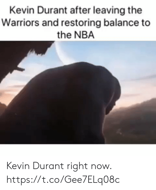 durant: Kevin Durant after leaving the  Warriors and restoring balance to  the NBA Kevin Durant right now. https://t.co/Gee7ELq08c