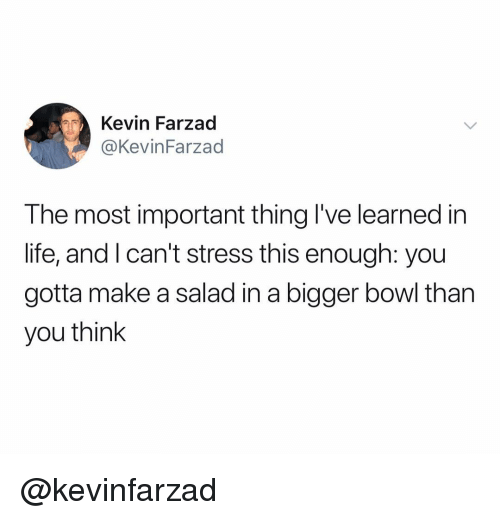 Life, Dank Memes, and Bowl: Kevin Farzad  @KevinFarzad  The most important thing I've learned in  life, and l can't stress this enough: you  gotta make a salad in a bigger bowl tharn  you think @kevinfarzad