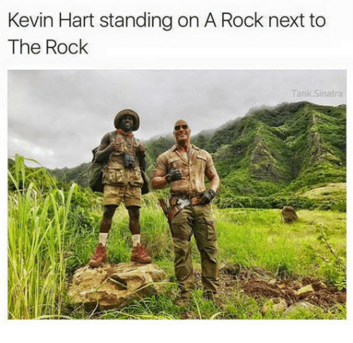 Kevin Hart, Memes, and The Rock: Kevin Hart standing on A Rock next to  The Rock  Tank Sinatra