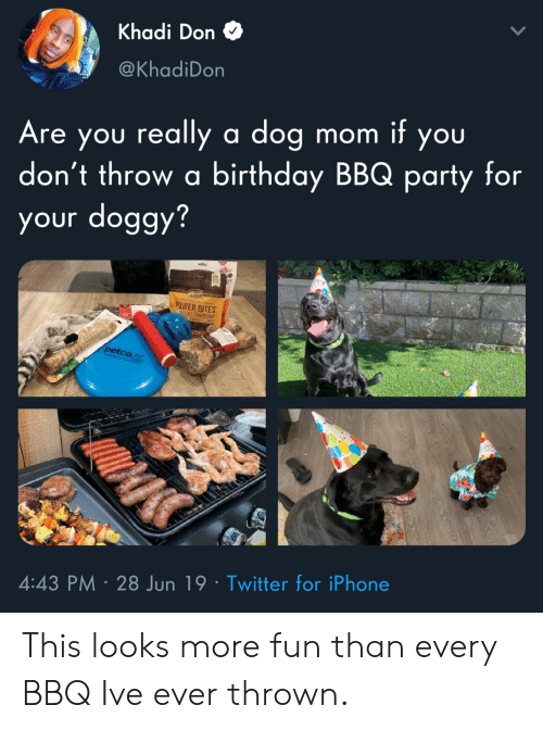 bbq: Khadi Don  @KhadiDon  Are you really a dog  don't throw a birthday BBQ party for  your doggy?  mom it you  EY  OWER BITES  petco  4:43 PM 28 Jun 19 Twitter for iPhone This looks more fun than every BBQ Ive ever thrown.