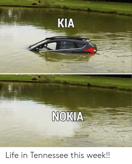 Kia Nokia: KIA  NOKIA Life in Tennessee this week!!